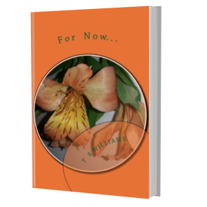 For Now book cover mockup